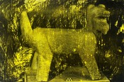 "Thumbnail image of ""Coyotl (yellow)"""