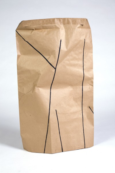 """Untitled (bag V)"""